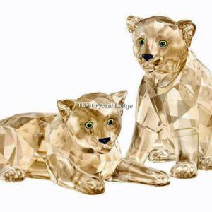 Swarovski_2019_SCS_Leopard_cubs_5428542   The Crystal Lodge