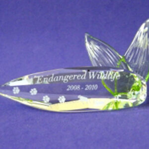 Swarovski SCS member items - Plaques and stands for annual editions