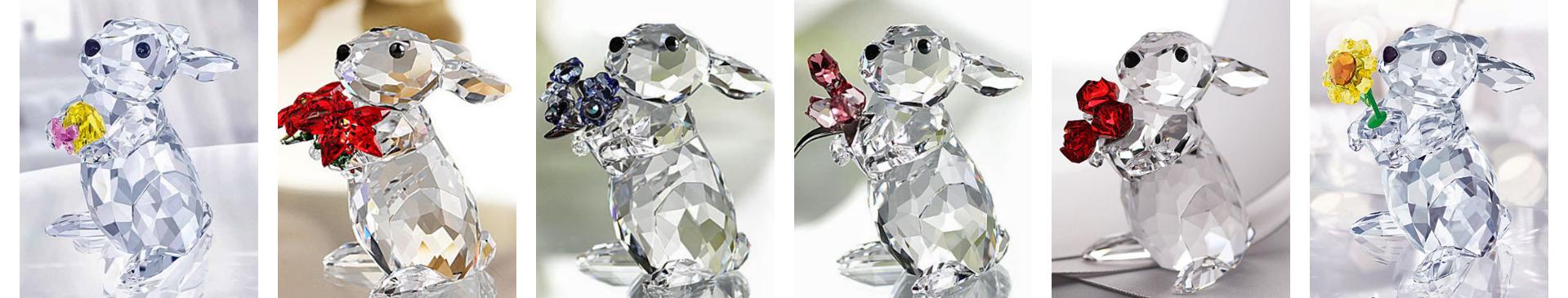 Rabbits 6